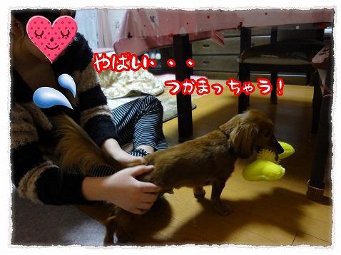 2013_2_12_1.jpg