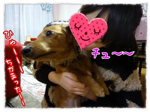 2013_2_12_3.jpg