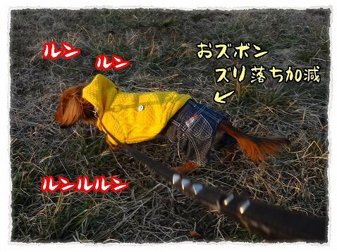 2013_2_13_1.jpg