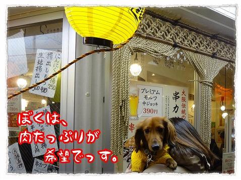 2013_2_14_2.jpg