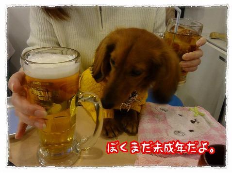 2013_2_14_3.jpg