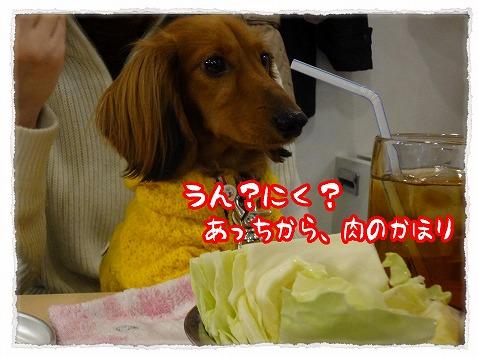 2013_2_14_4.jpg
