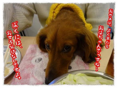 2013_2_14_5.jpg