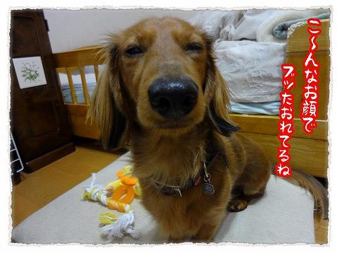 2013_2_15_3.jpg