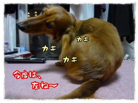 2013_2_19_2.jpg