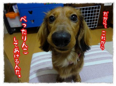 2013_2_21_3.jpg