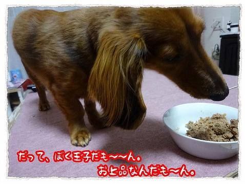 2013_2_22_1.jpg