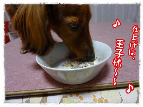 2013_2_22_3.jpg