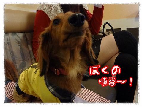 2013_2_25_6.jpg
