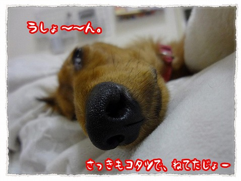 2013_2_6_1.jpg