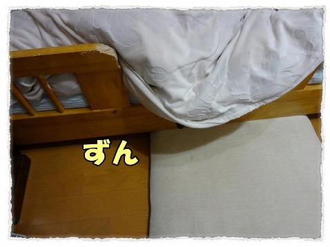 2013_2_9_1.jpg