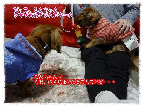 2013_3_13_1.jpg