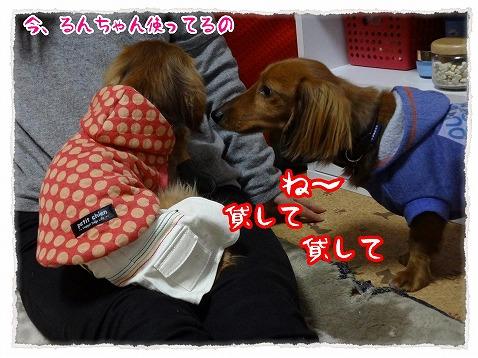 2013_3_13_2.jpg