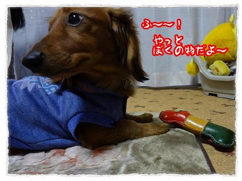 2013_3_13_5.jpg
