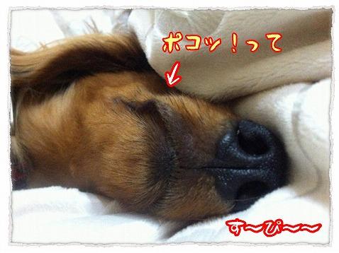 2013_3_14_3.jpg
