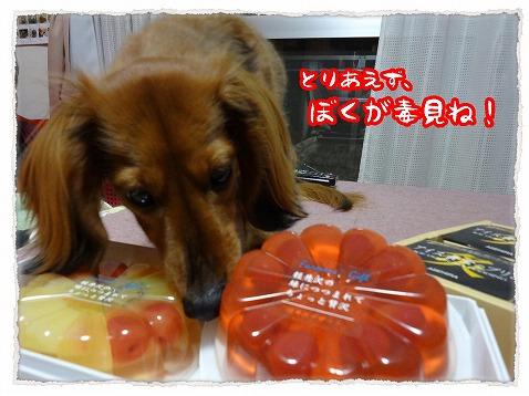 2013_3_15_2.jpg