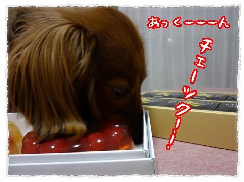 2013_3_15_3.jpg