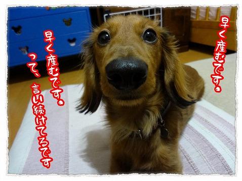 2013_3_16_1.jpg