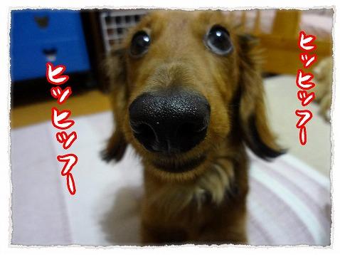 2013_3_16_2.jpg