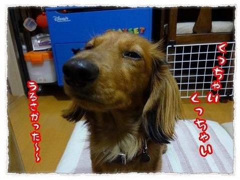 2013_3_17_1.jpg