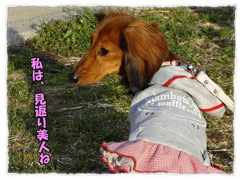 2013_3_19_2.jpg