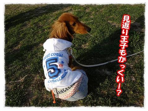 2013_3_19_3.jpg