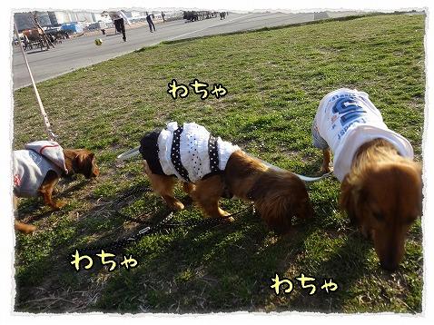 2013_3_19_4.jpg