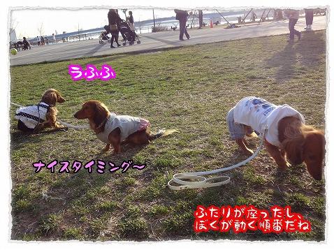 2013_3_19_7.jpg
