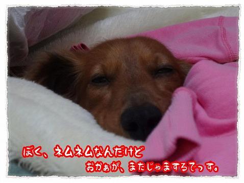 2013_3_1_1.jpg