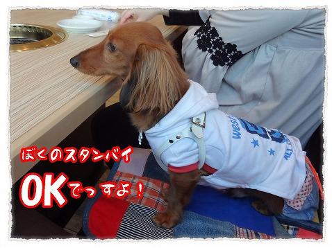 2013_3_20_2.jpg