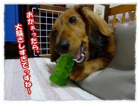 2013_3_22_2.jpg