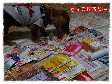 2013_3_23_3.jpg