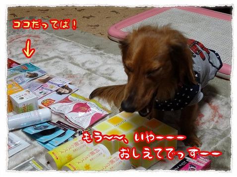 2013_3_23_5.jpg