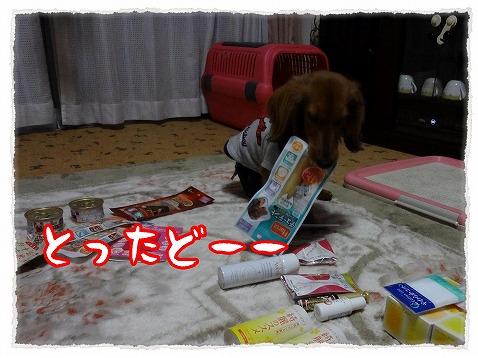 2013_3_24_8.jpg