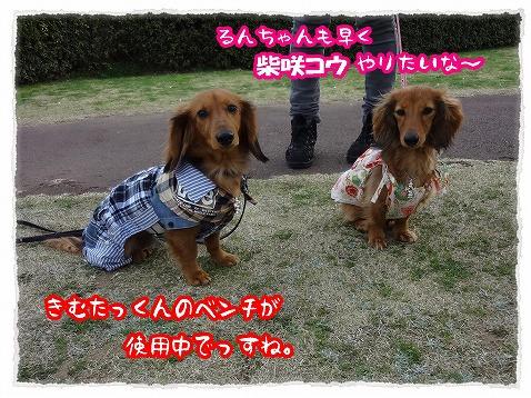 2013_3_27_3.jpg