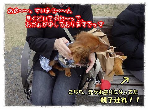 2013_3_27_4.jpg
