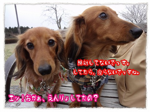 2013_3_27_6.jpg