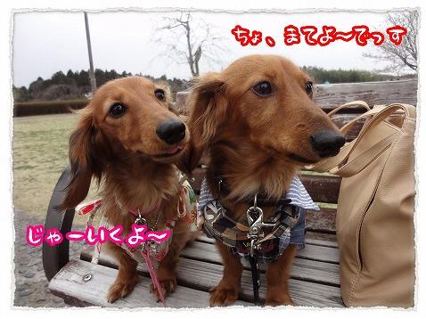 2013_3_28_3.jpg