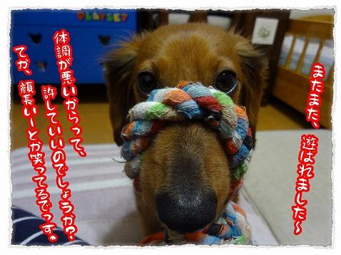 2013_3_5_3.jpg