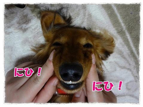 2013_3_6_3.jpg