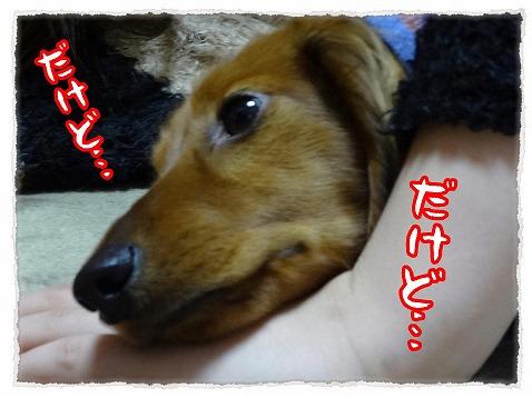 2013_3_6_4.jpg