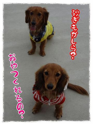 2013_3_7_1.jpg
