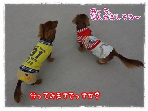 2013_3_7_2.jpg