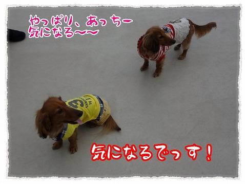 2013_3_7_3.jpg