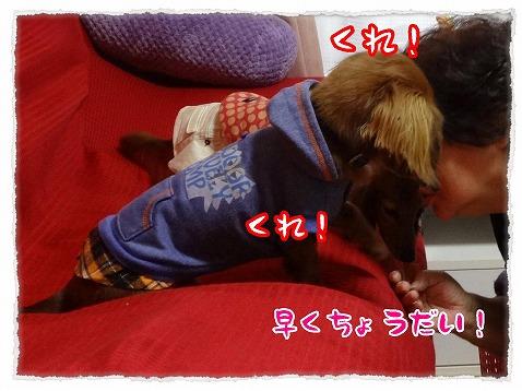 2013_3_7_4.jpg