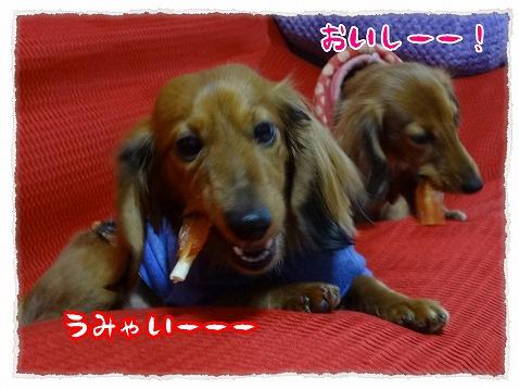 2013_3_7_5.jpg