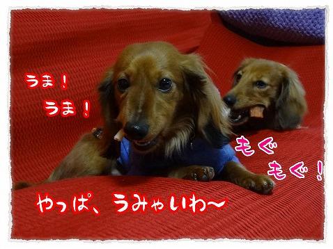 2013_3_7_7.jpg
