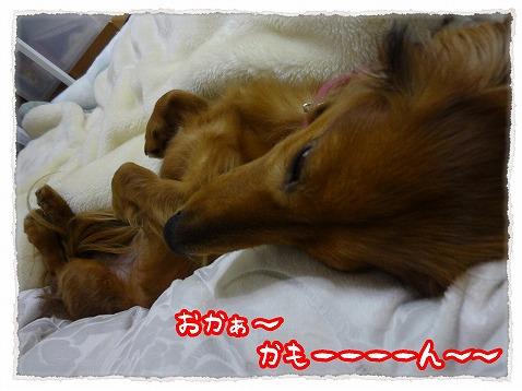 2013_5_6_2.jpg