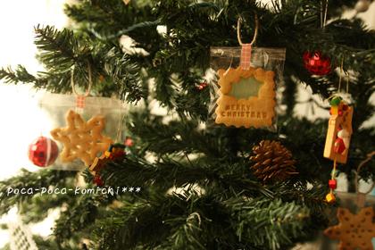 2012-12-14_5454.jpg