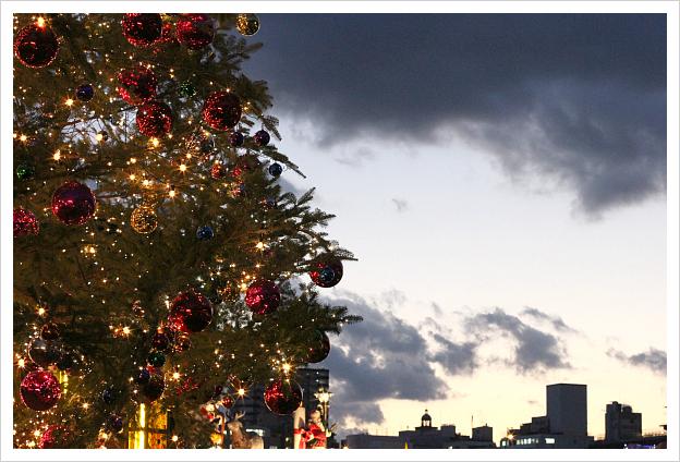 2012-12-21-32.jpg